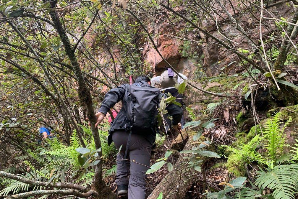 Mount Victoria to Blackheath (26km)
