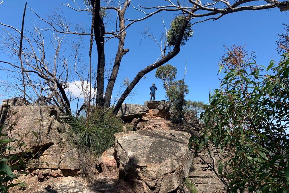 Katoomba to Katoomba via Mt Solitary (36.4km, elev 2200m)